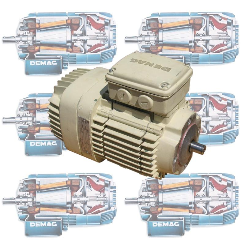 demag motor repair and rewind